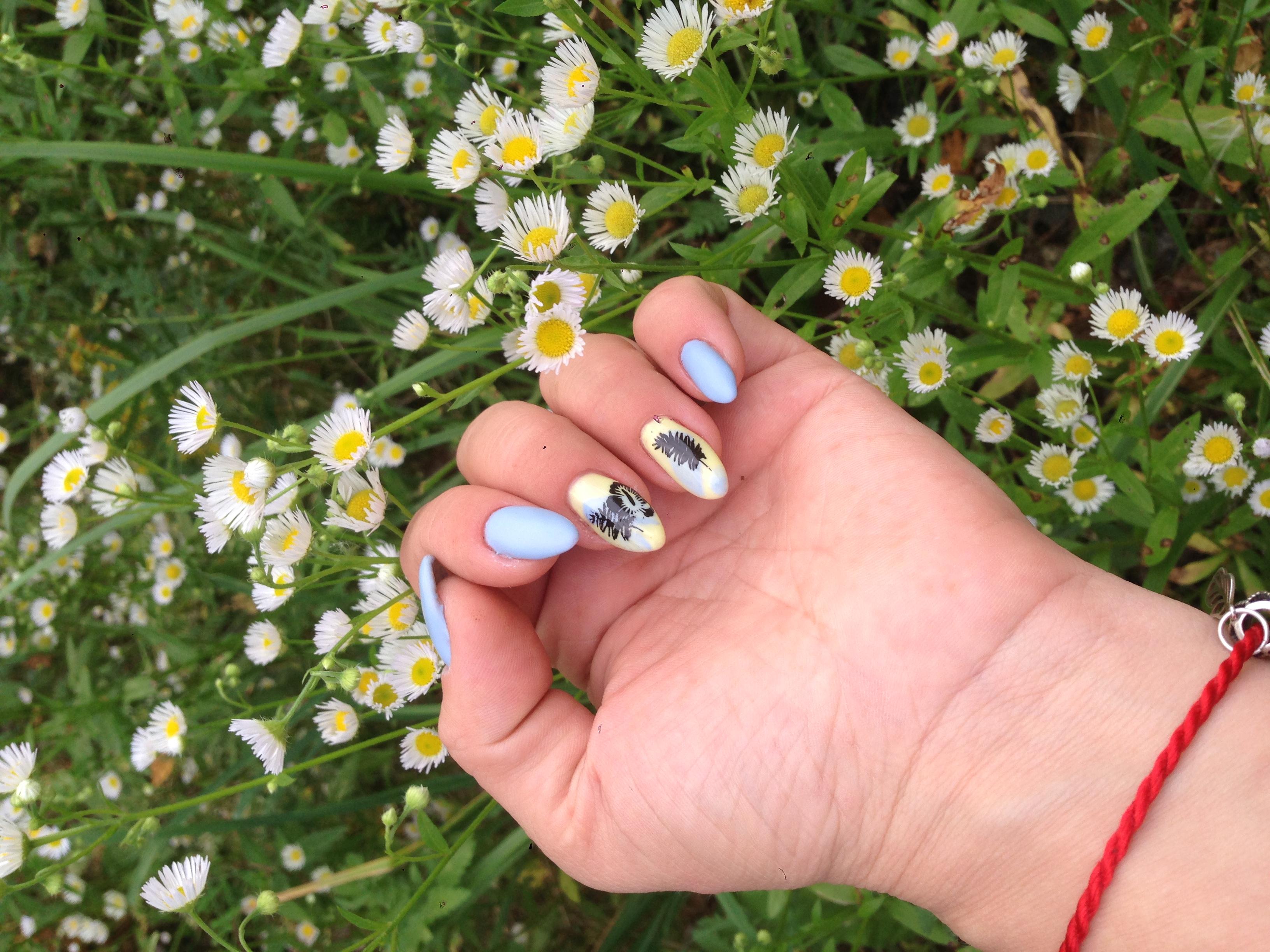 Маникюр с растительным рисунком в голубом цвете на длинные ногти.