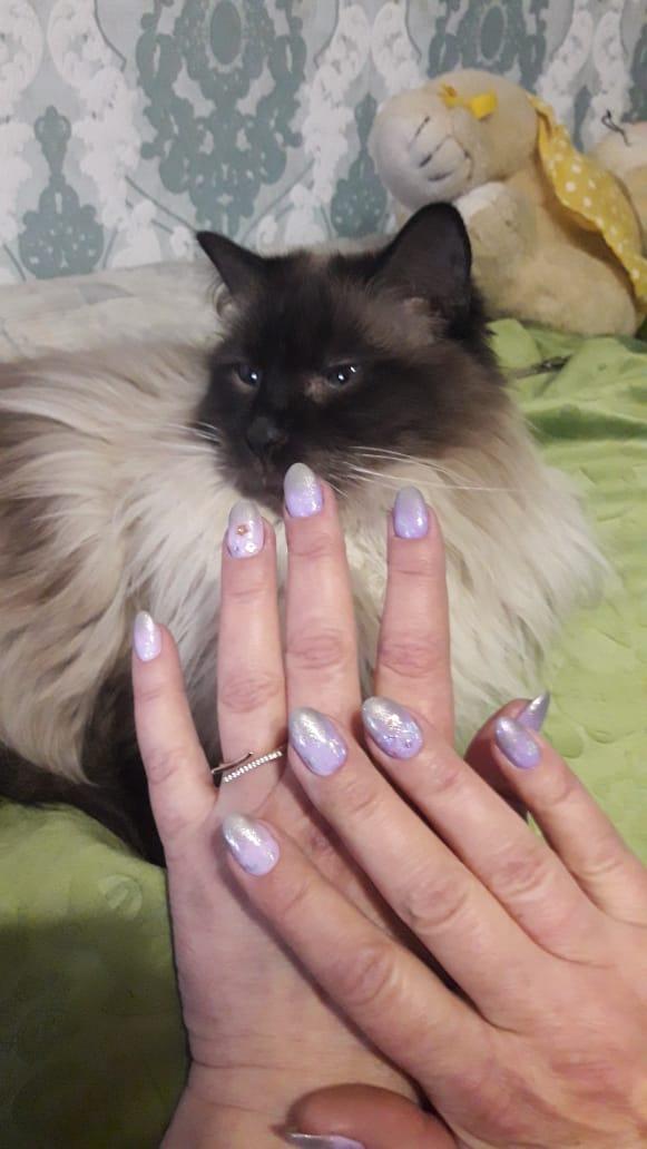 Маникюр с серебряной втиркой в сиреневом цвете на короткие ногти.