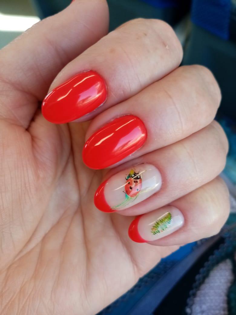 Маникюр с френч-дизайном и божьей коровкой в красном цвете на короткие ногти.