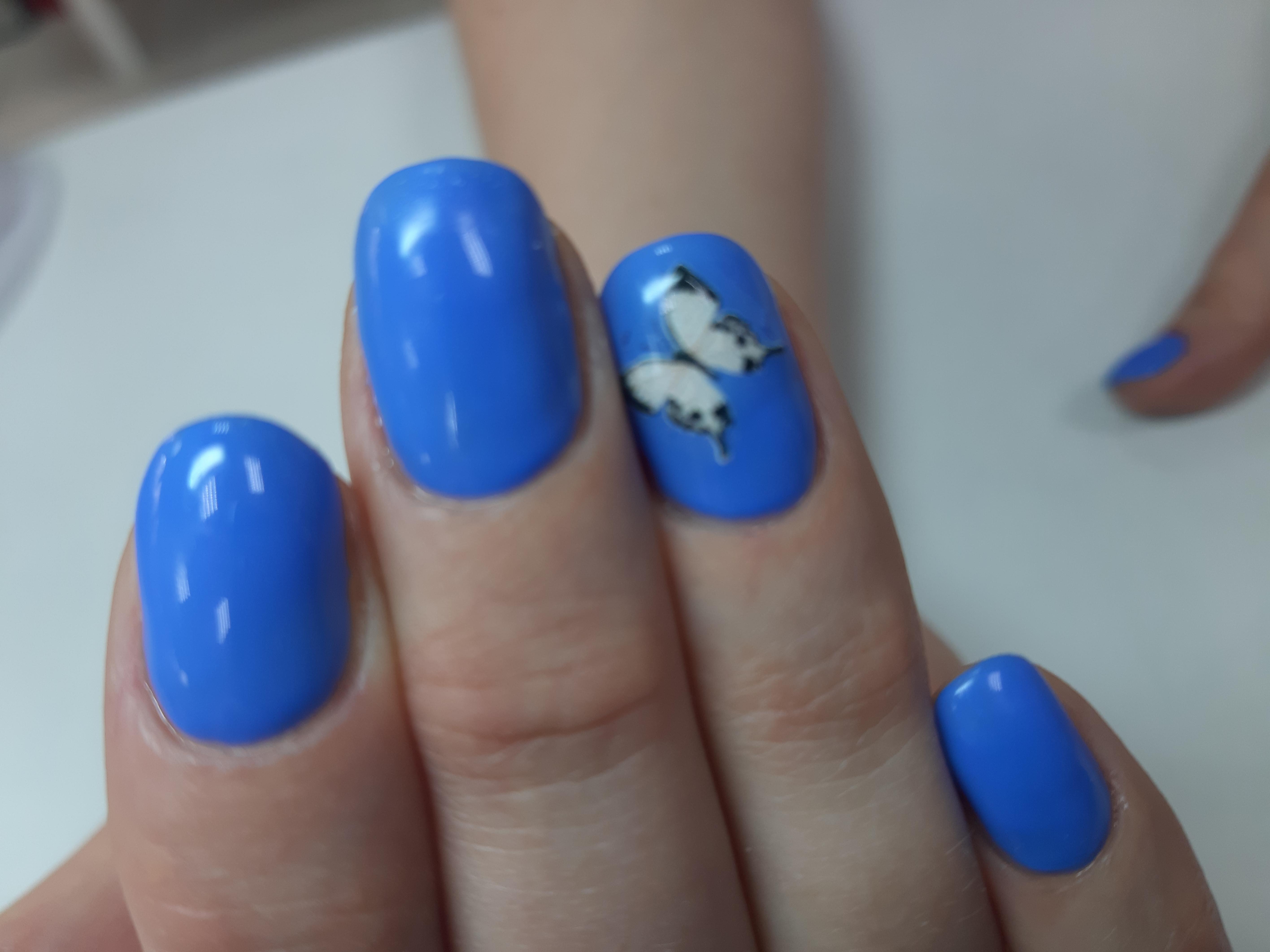 Маникюр с бабочками в голубом цвете.